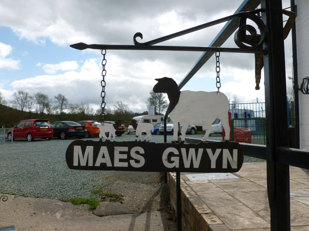 Sheep and Lambs House / Farm Sign